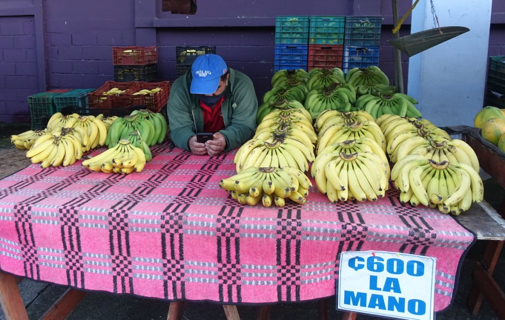 banana stand at the market Costa Rica