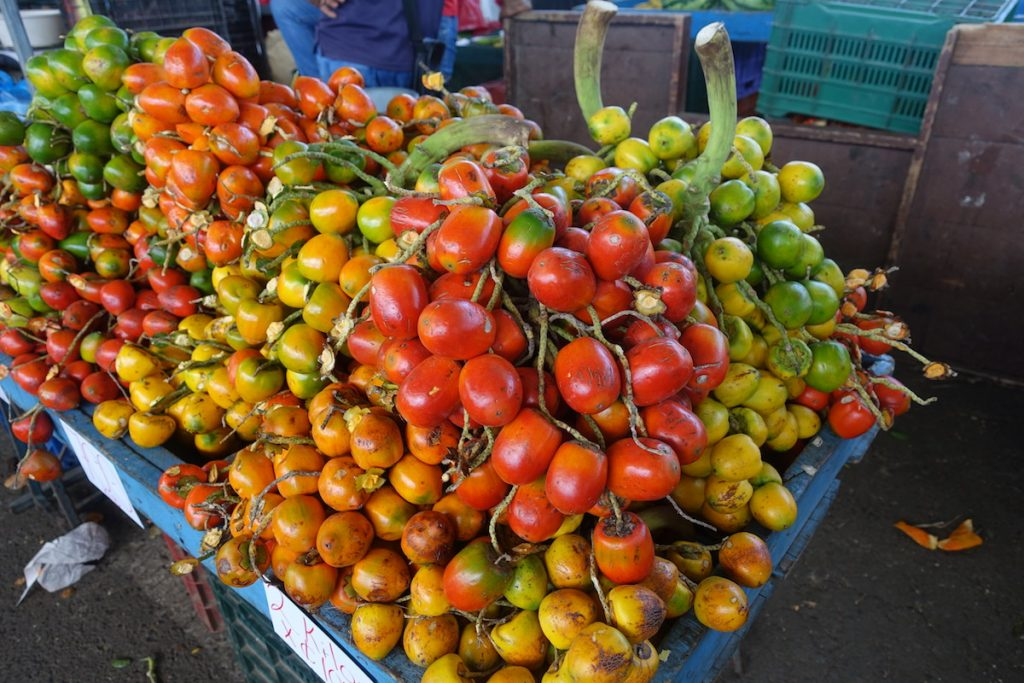 fresh Pejibaye - peach palm fruit